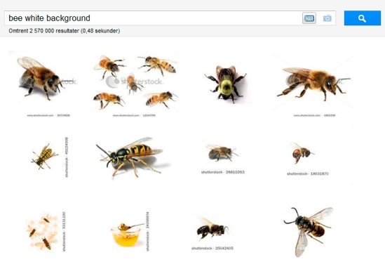 Google bee search